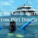 Great Barrier Reef Tours From Port Douglas