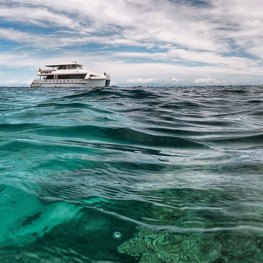 wavelength reef tours from port douglas on the great barrier reef