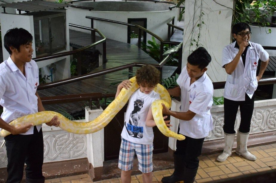 snakes backpacking south east asia