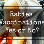 Why We Finally Got Rabies Vaccinations for Travel
