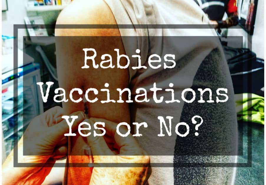 Are rabies vaccinations necessary for travel