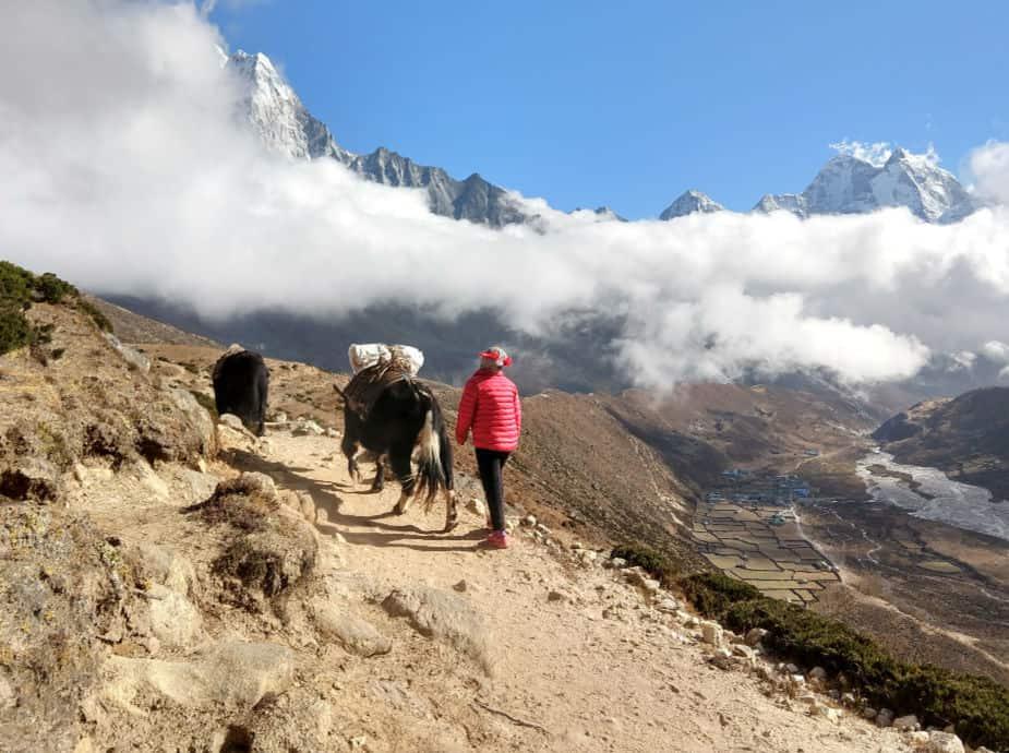Everest Base Camp Trek Lobuche to Dingboche