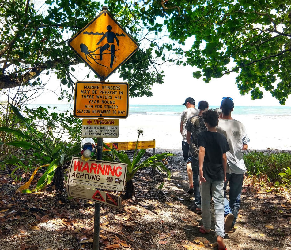 Things to do in Cairns and Port Douglas Stinger Season