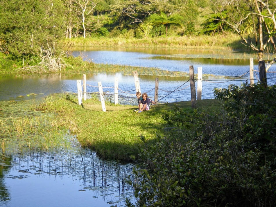 Wildlife Experiences in the Cairns and Port Douglas Area, Platypus Spotting