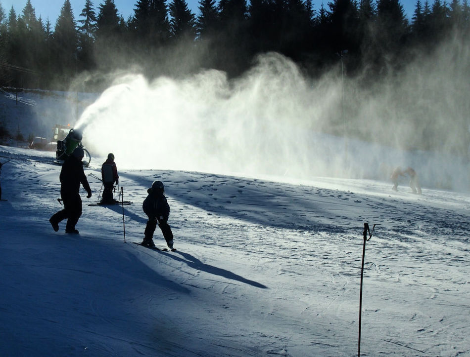 Family Gap Year Ideas Learn to Ski