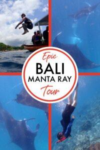 Bali Manta Ray tour