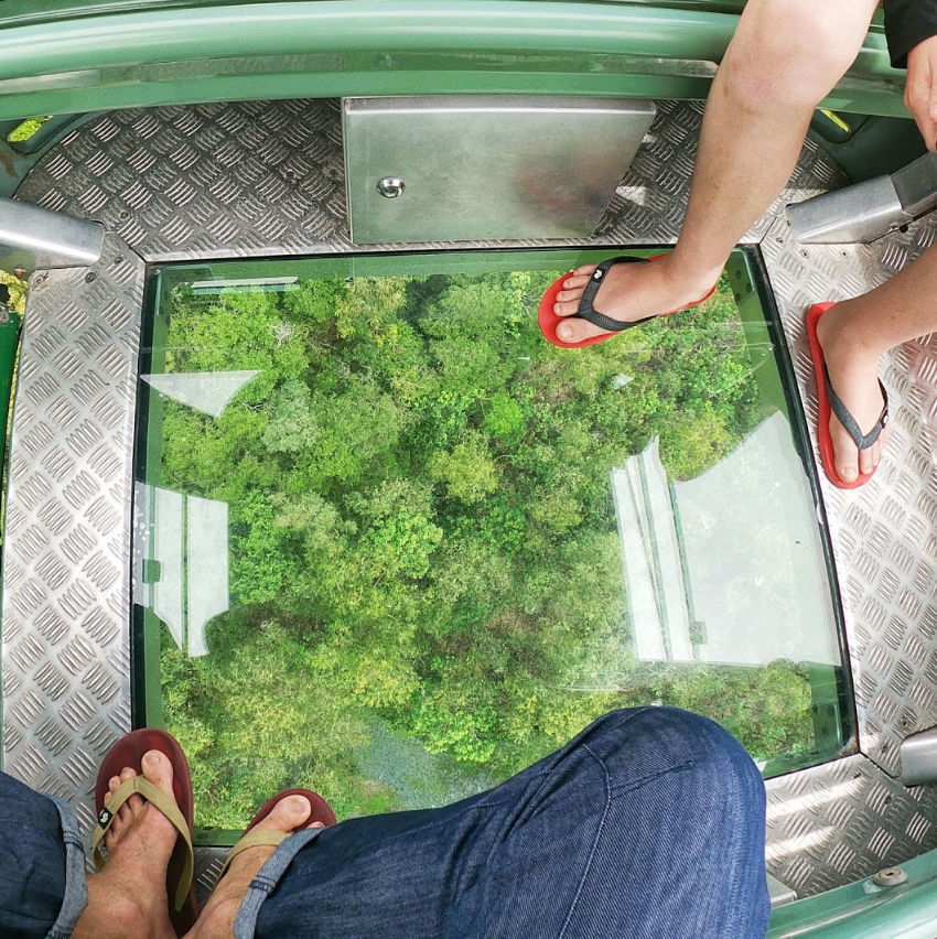 Things to do in Cairns take the Skyrail cable car from Cairns to Kuranda