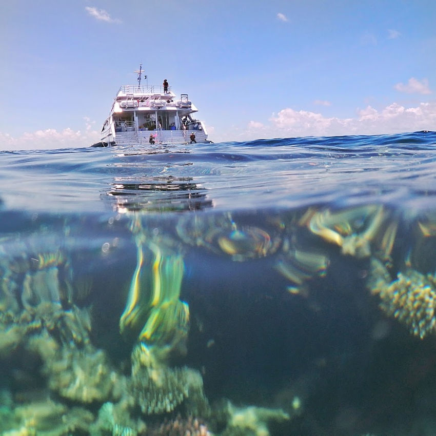Things to do in Cairns visit the great barrier reef. Coral and Reef Tour Boat