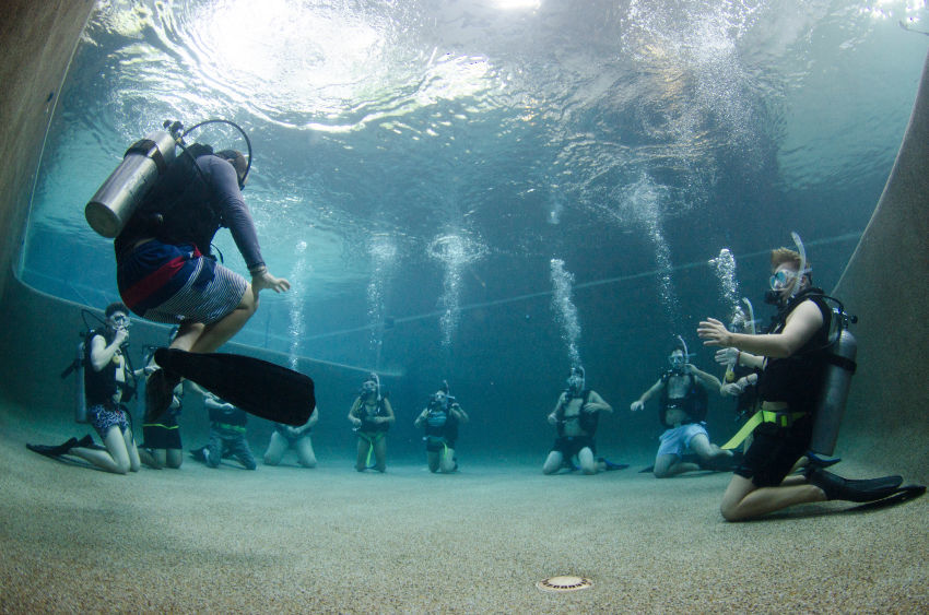 Learning to dive at Divers Den Cairns