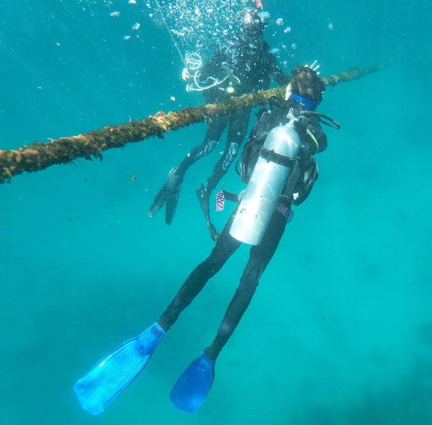 Learning to scuba dive on Reef Quest (1)