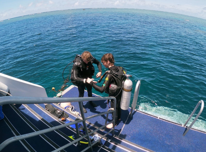 Learning to scuba dive on reef quest