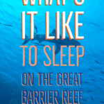 What's it like to sleep on the great barrier reef cairns liveaboard