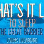 A Liveaboard on the Great Barrier Reef from Cairns - What's it Like ?