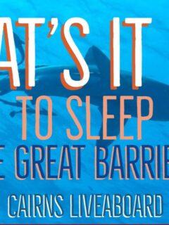 liveaboard cairns liveaboard diving australia