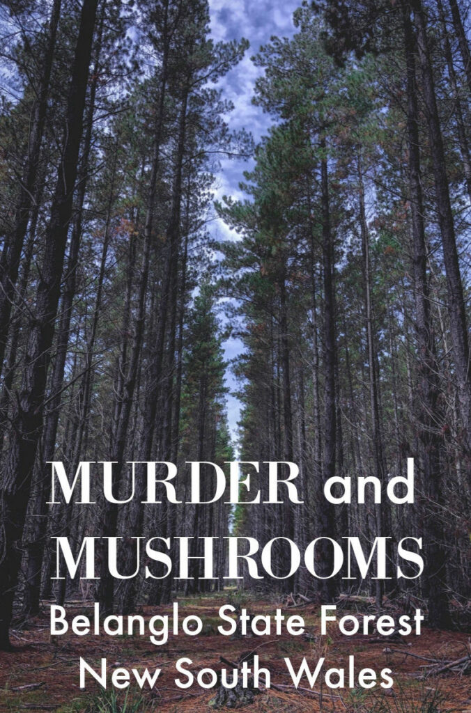 Belanglo State Forest Murder and Mushrooms