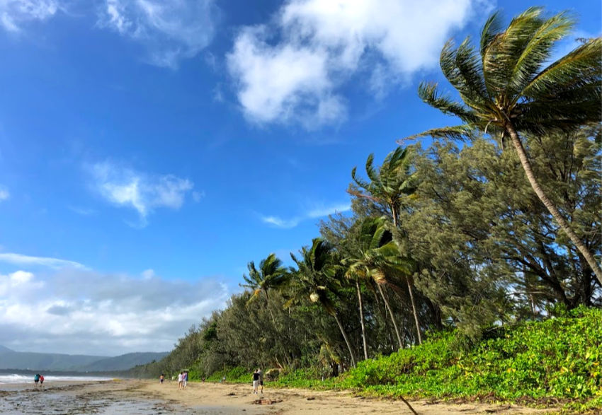 Four Mile Beach Port Douglas on a sunny but windy day in December. When is the best time to visit Port Douglas