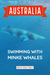 Australia scuba diving swimming with whales