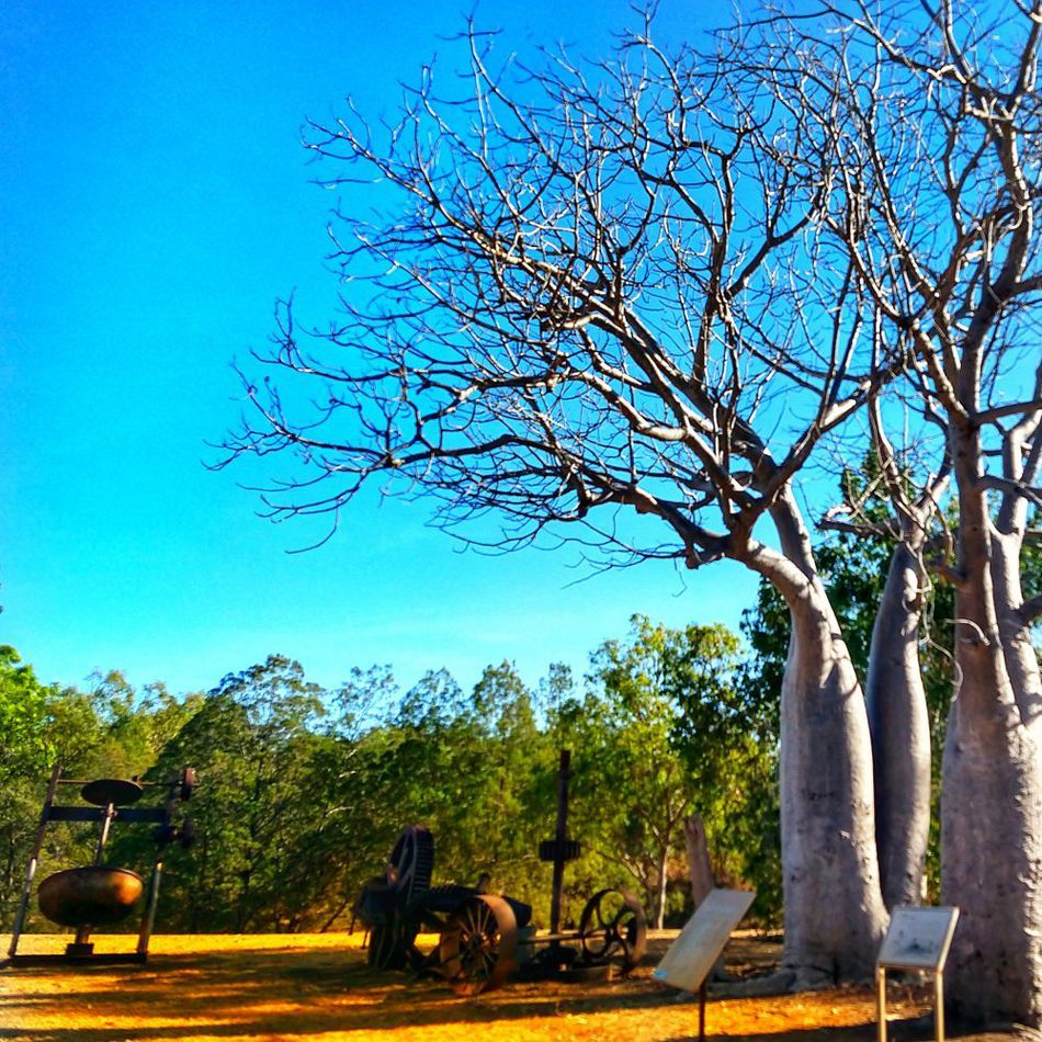 Places to Visit in the Northern Territory Pine Creek