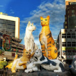 Things to Do in Kuching Sarawak (Cat City!)
