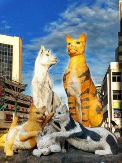 Family of Cats in Cat City Kuching. Statue in modern KuchingCat statues kuching. Things to see in Kuching