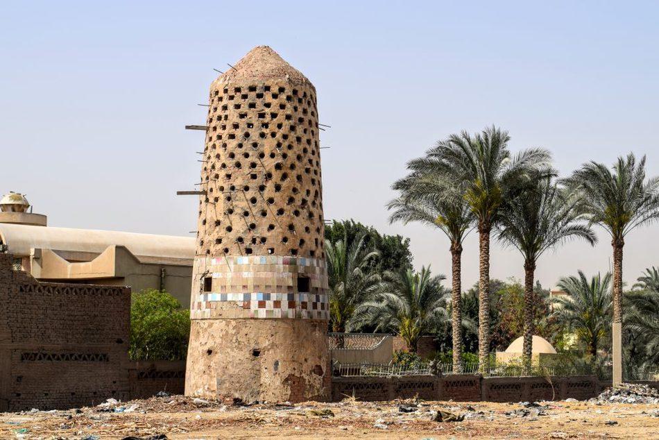 "Pidgeon-埃及的热门食品Pidgeon的肉屋是用来存放肉的。"" class ="" wp-image-43165"" srcset ="" https://worldtravelfamily.com/wp-content/uploads/2019/12/Pidgeon-in-Egypt-Food- Meat-1000x667.jpg 1000w,https://worldtravelfamily.com/wp-content/uploads/2019/12/Pidgeon-in-Egypt-Food-Meat-300x200.jpg 300w,https://worldtravelfamily.com/wp- content / uploads / 2019/12 / Pidgeon-in-Egypt-Food-Meat-768x512.jpg 768w,https://worldtravelfamily.com/wp-content/uploads/2019/12/Pidgeon-in-Egypt-Food-Meat -1536x1024.jpg 1536w,https://worldtravelfamily.com/wp-content/uploads/2019/12/Pidgeon-in-Egypt-Food-Meat-2048x1365.jpg 2048w,https://worldtravelfamily.com/wp-content /uploads/2019/12/Pidgeon-in-Egypt-Food-Meat-735x490.jpg 735w"" size =""(max-width:1000px)100vw,1000px"