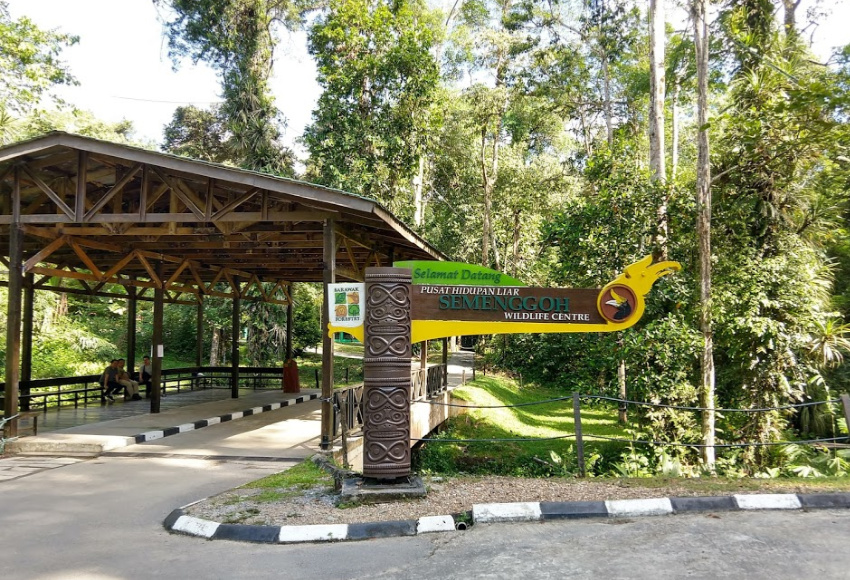 Entrance Semenggoh wildlife centre near kuching