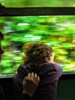kids enjoying train ride Train from Colombo to Galle Sri Lanka
