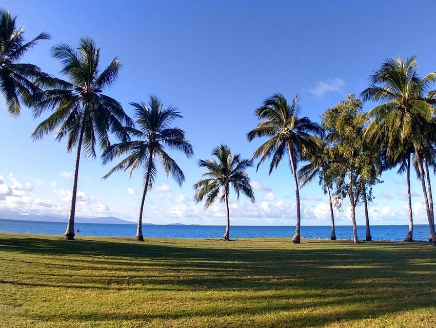 View from Port Douglas Tropical Living Blue Skies Palm Trees