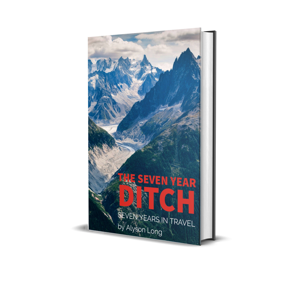 the seven year ditch book mockup