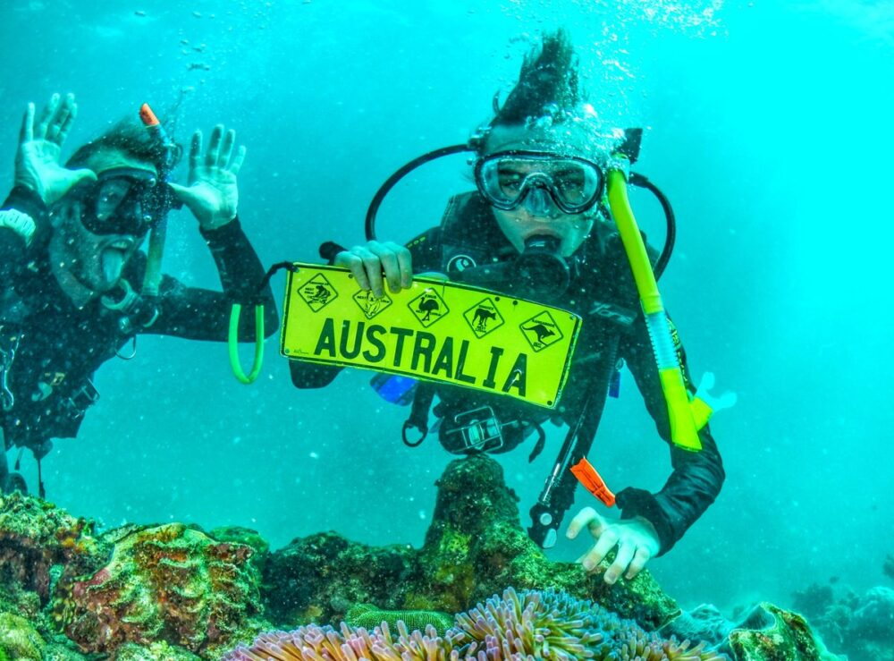 how expensive is a gap year scuba diving