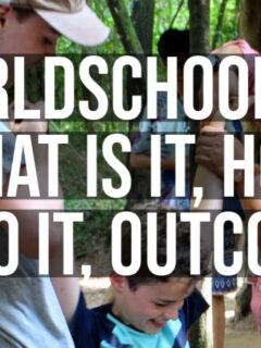 worldschooling what does worldschooling involve