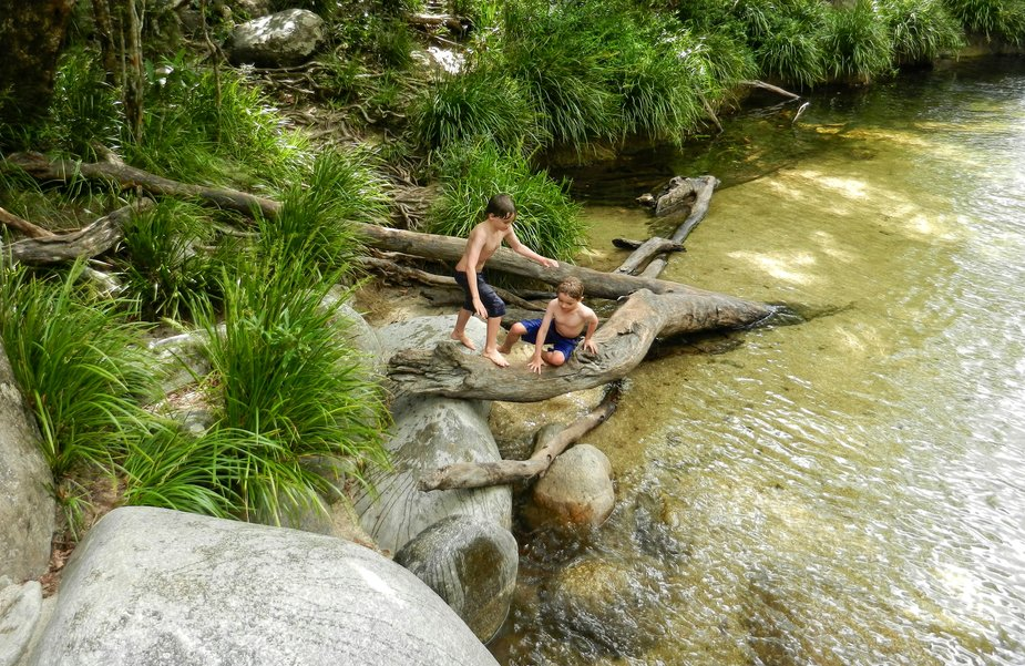 kids playing in a rainforest stream at mossman gorge