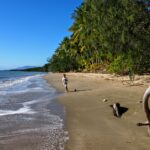 Port Douglas With Kids 2020