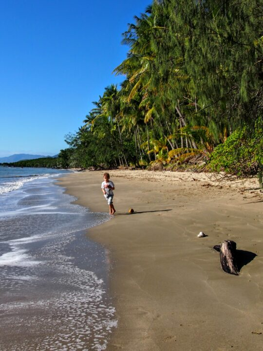 kids on an unspoilt beach port douglas australia