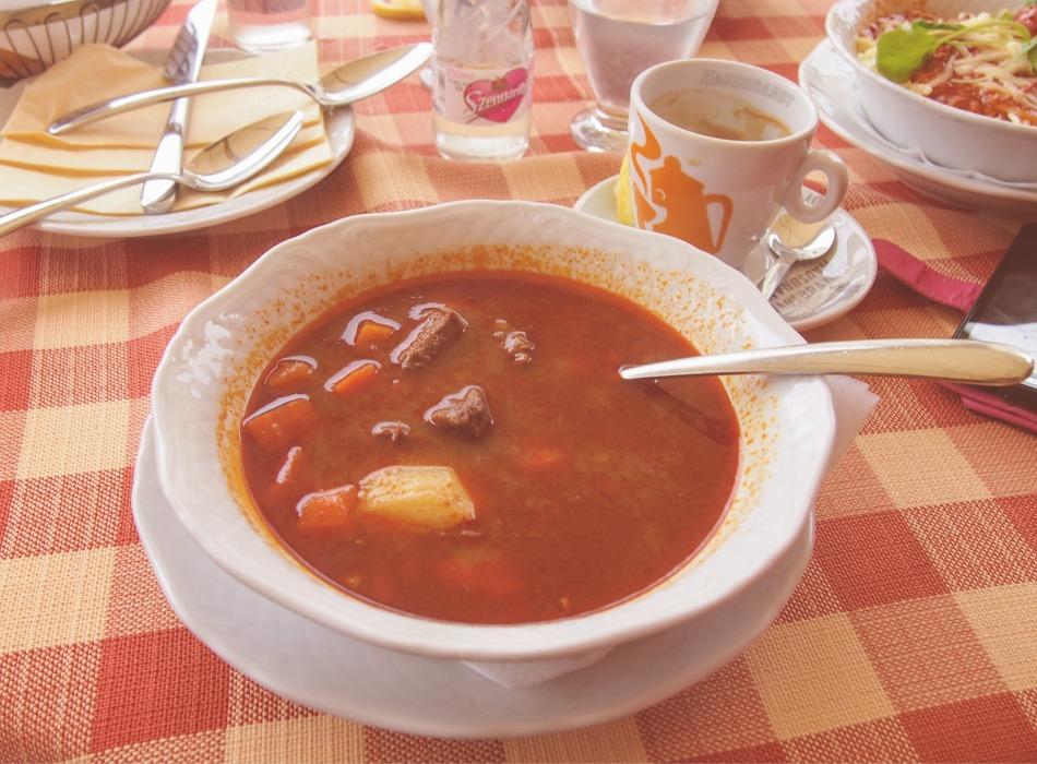 Hungarian food goulash soup