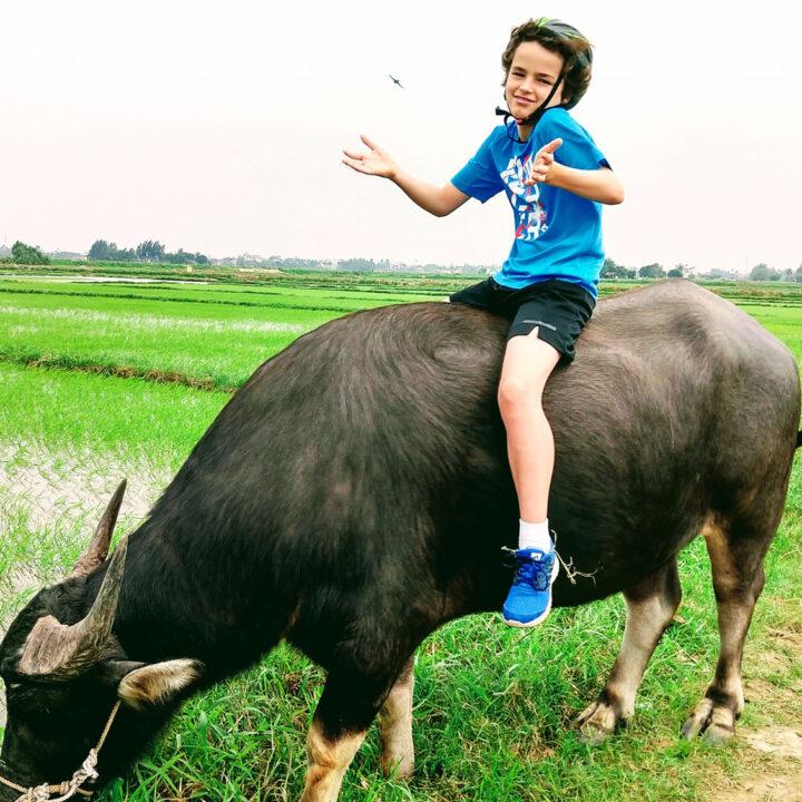 vietnam for kids child on water buffalo