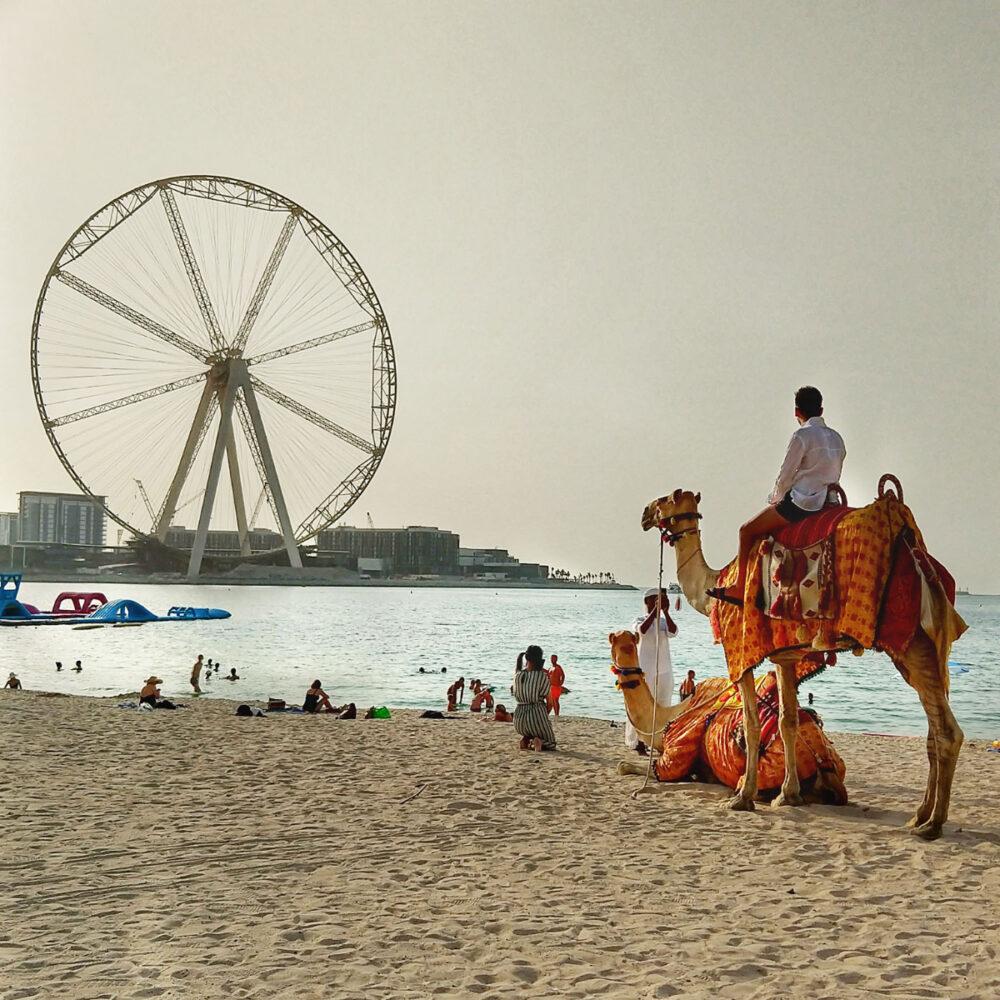 What is Dubai famous for Dubai Wheel Ain Dubai