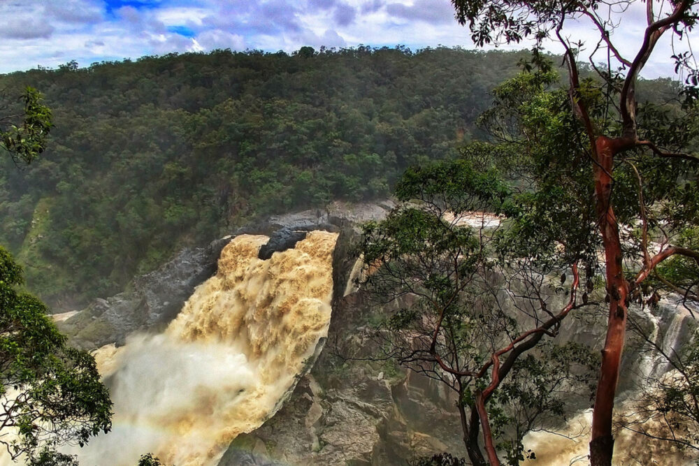 Things to do in Cairns with kids see Barron River Falls