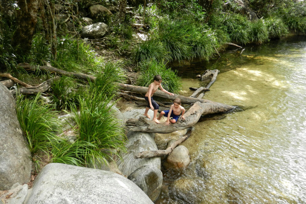 Things to do in Cairns with kids visit Mossman Gorge