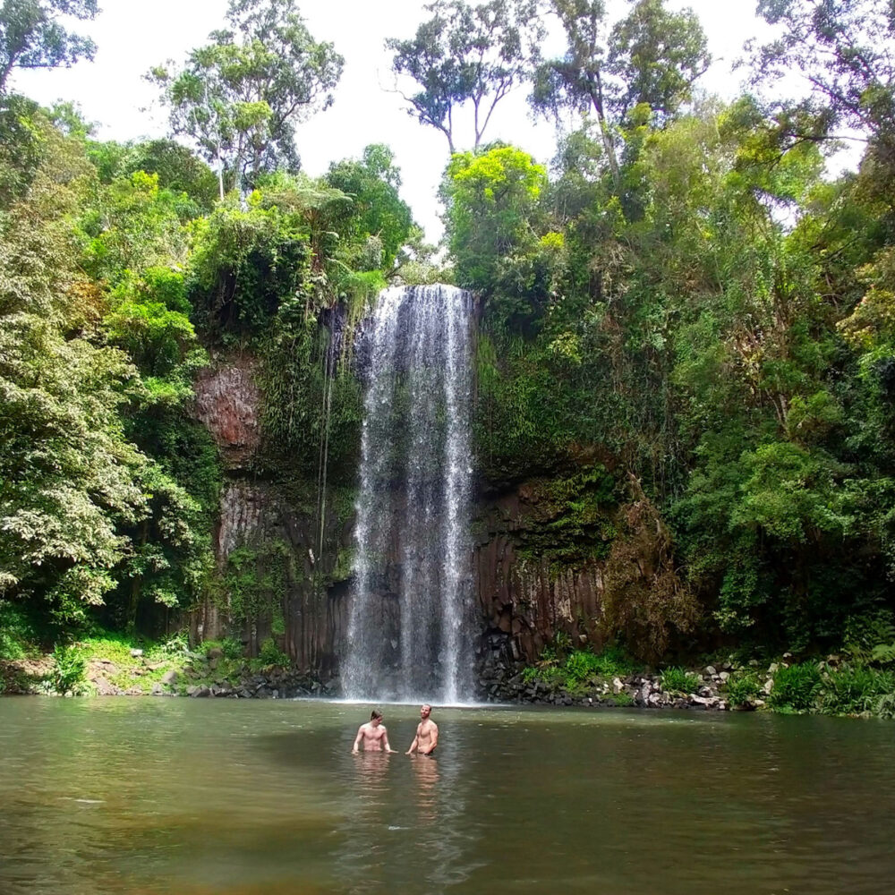 You can swim in a waterfall near Cairns at Millaa Millaa