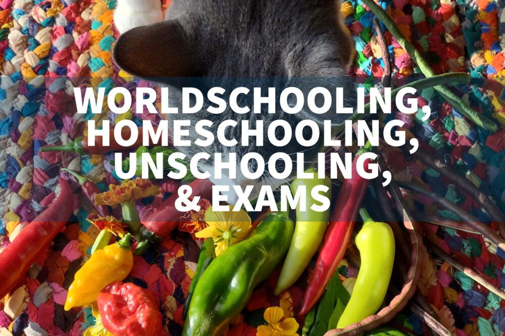 sitting exams for worldschoolers homeschoolers unschoolers