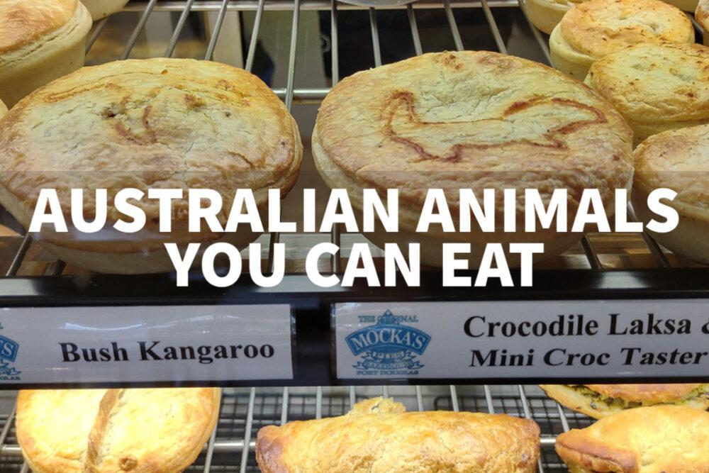 australian animals you can eat kangaroo and crocodile pie